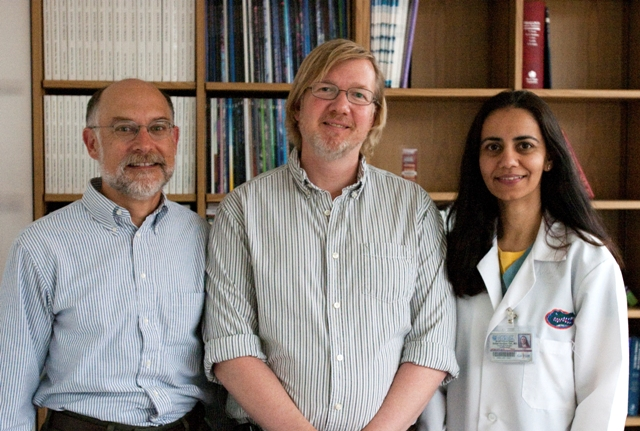 University of Florida researchers Alfred Lewin, a molecular geneticist, David Bloom, a virologist, and Sonal Tuli, an ophthalmologist, have teamed up to investigate a potential new therapy to prevent the recurrence of herpes. Photo by Sarah Kiewel