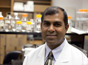 Satya Narayan, a professor of anatomy and cell biology at the College of Medicine and a member of the UF Shands Cancer Center.