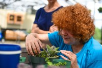 Marcia Velasco is one of the participants of UF's therapeutic horticulture program. Photo by Shannon Kaestle