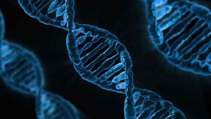 UF to offer new online precision medicine graduate certificate